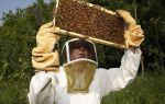 Инвентарь и оборудование по уходу за пчелами