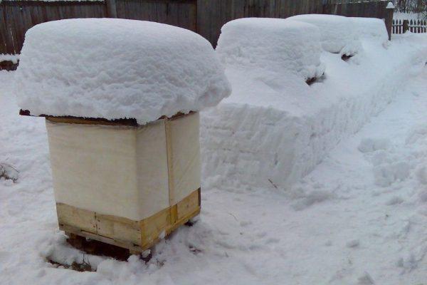 улей под снегом